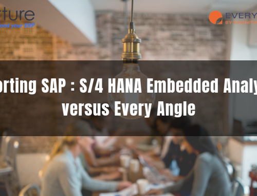 Reporting SAP : S/4 HANA Embedded Analytics versus Every Angle